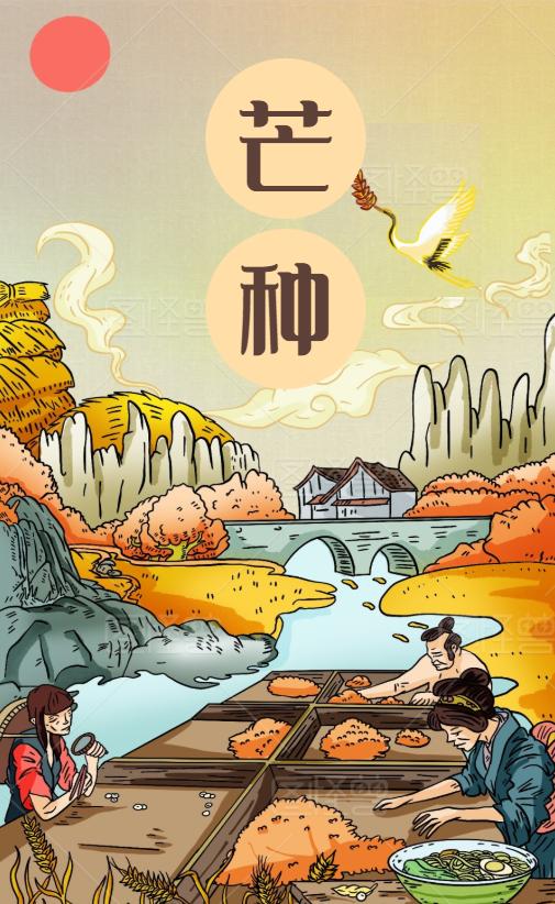 芒种 Mangzhong – det nionde solståndet
