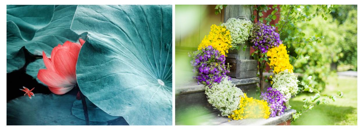 当夏至遇到仲夏:看见了中国和瑞典 | Xiazhi (Summer Solstice) & Midsummer Hand in Hand
