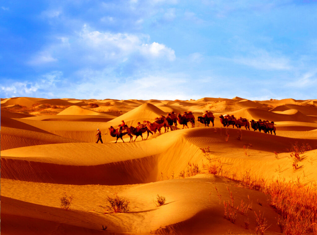 带你看新疆 | World Natural and Cultural Heritage of Xinjiang